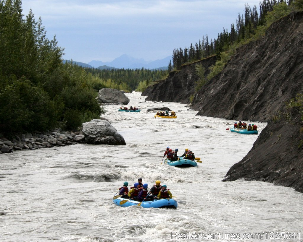 Rafting - Scenic Floats or Whitewater Thrills | Image #6/9 | Alaska Small Group Guided Wildlife & Glacier Tours