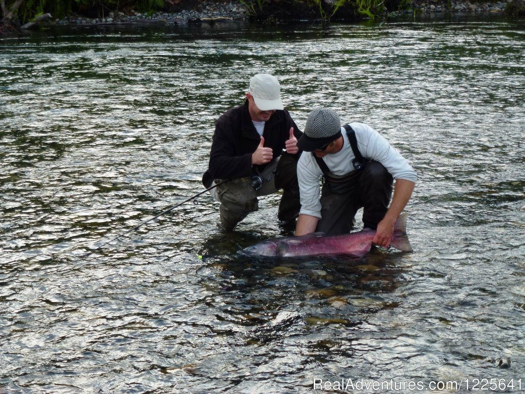 Beautiful King Salmon or Copper River Reds | Image #8/9 | Alaska Small Group Guided Wildlife & Glacier Tours