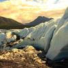Alaska Small Group Guided Wildlife & Glacier Tours Alaska - Is it on your bucket list?