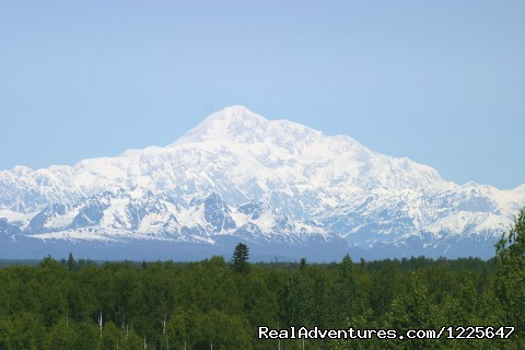 Image #2 of 11 - Alaskan Tour Guides, Inc.