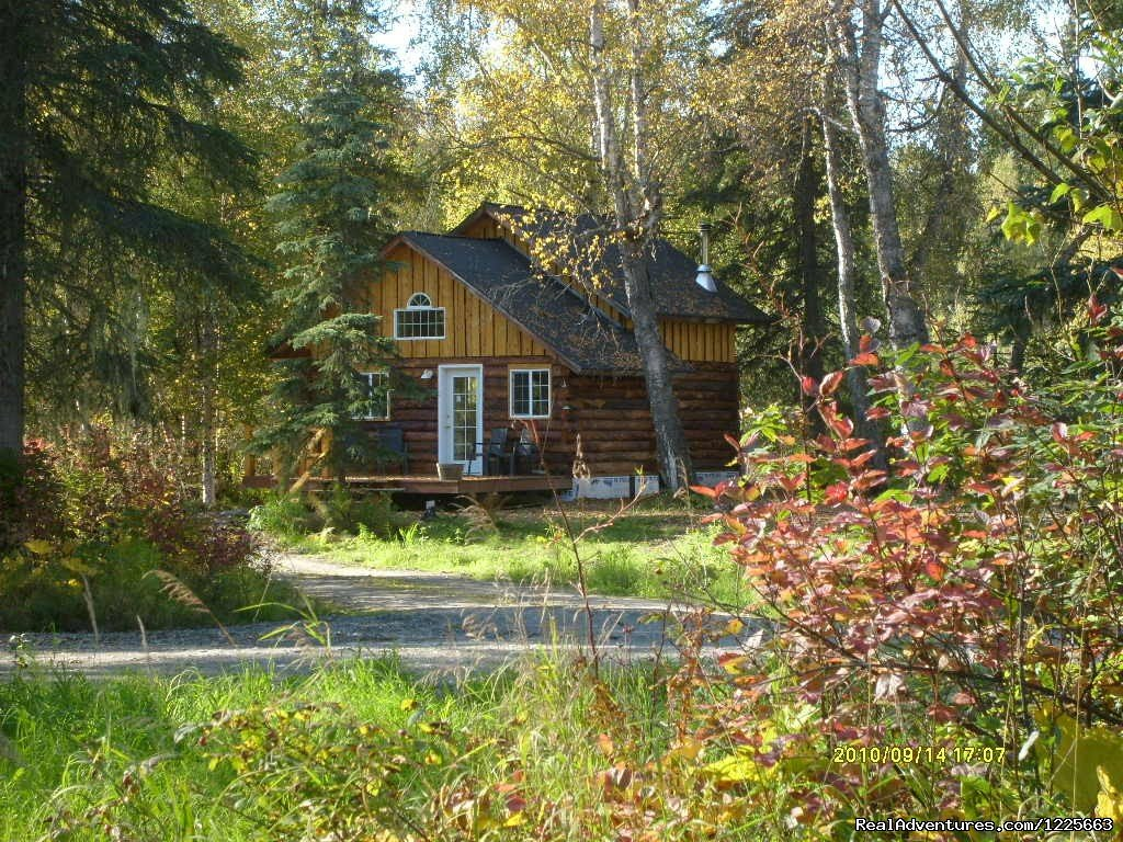 'Little Cabin in the Woods' | Image #2/14 | Denali Fireside Cabins & Suites
