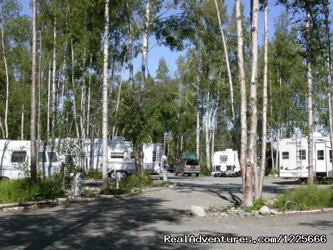 Long pull thru sites (#4 of 5) - Come stay with us at Talkeetna Camper Park