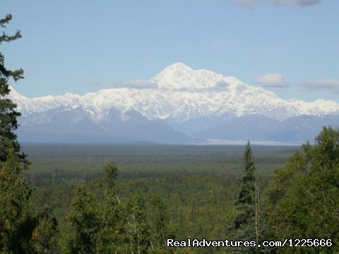 Mt. McKinley - Come stay with us at Talkeetna Camper Park