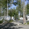 Come stay with us at Talkeetna Camper Park