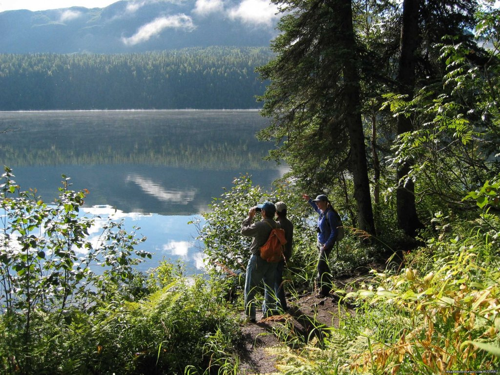 Hikes and custom tours in Denali State Park and Talkeetna, Alaska. Private hikes, heli-hikes, birding, backpacking, and photography in the South Denali area. Mt. McKinley views, wildlife, and fantastic naturalist guides.