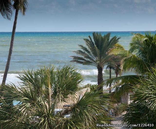 Ocean Views - Tropical Ocean View Suites at the Sea Spray Inn
