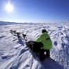 Dog sledding with Muktuk Adventures