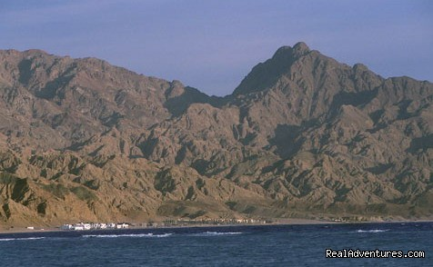 Dahab, Sinai - Holistic Travel, Private Tours