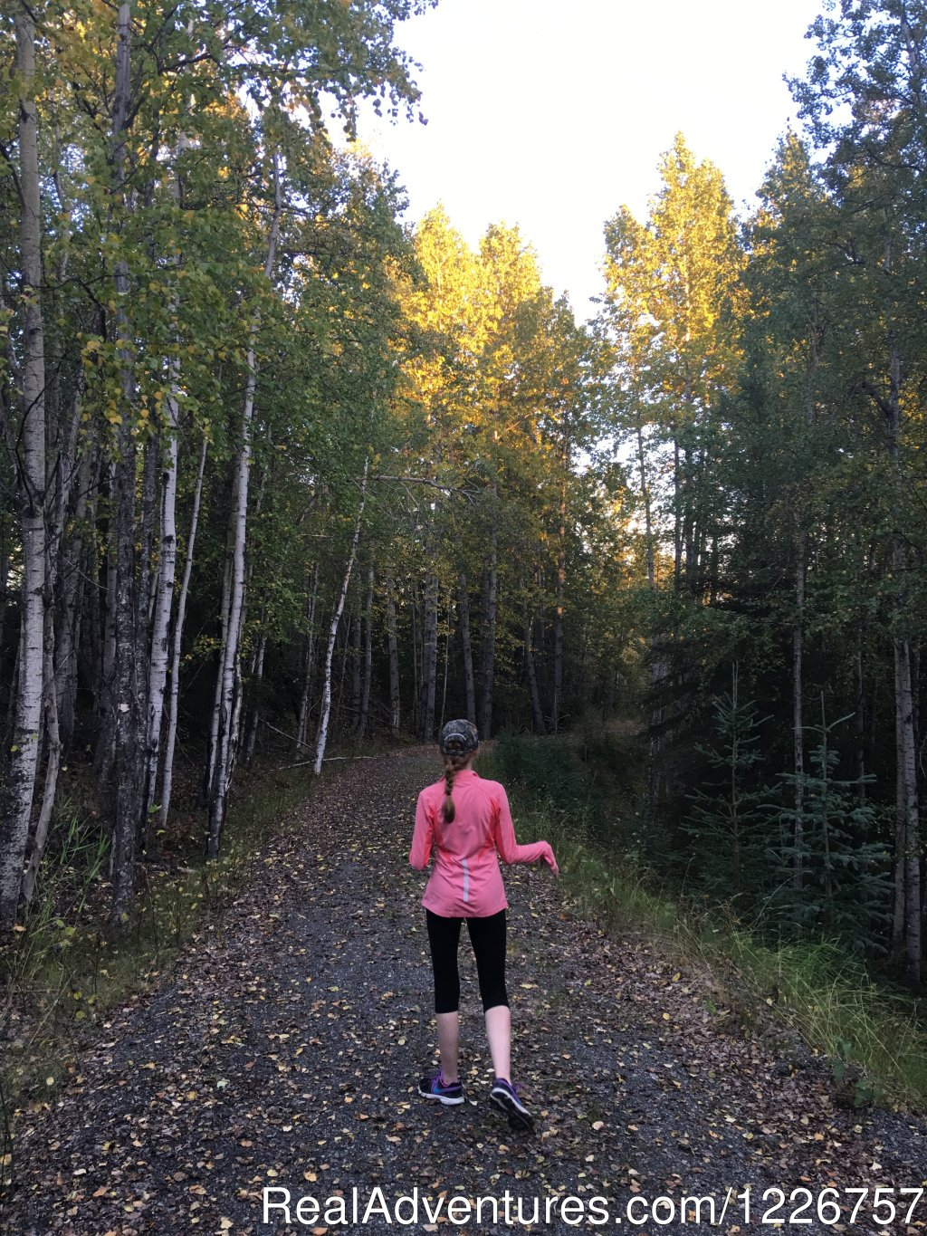 Trails, Trails, and Trails | Image #3/3 | Soldotna Chamber of Commerce Visitor Information