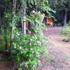 North Pole Cabins Vacation Rentals North Pole, Alaska