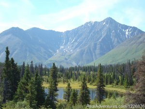 Yukon  Adventures with Black Bear Wilderness Sight-Seeing Tours Whitehorse, Yukon Territory