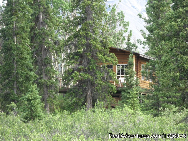 Wilderenss Cabin Rental - Yukon  Adventures with Black Bear Wilderness