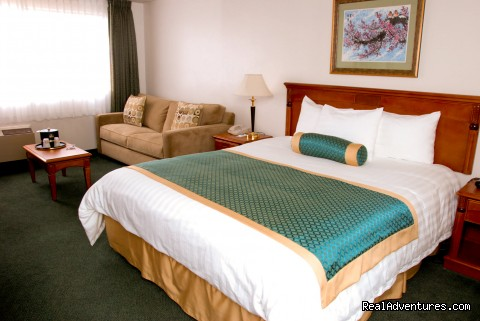 Mini Suite Room - BEST WESTERN SOUTH BAY HOTEL at LAX Area