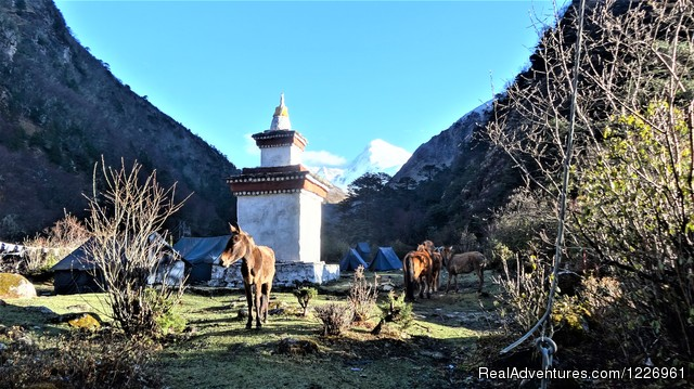 Bhutan Beautiful Tour