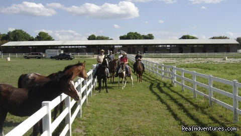 Giddy Up!  - Wild West Horse Back Riding in Ocala near Disney