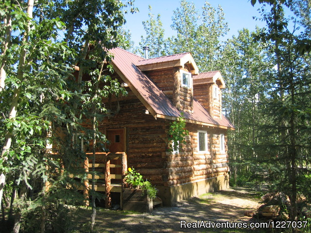Arctic Getaway Cabin and Breakfast Bed & Breakfasts Alaska