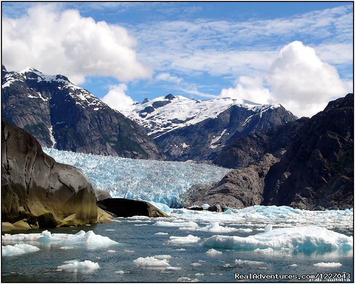 LeConte Bay and Glacier | Image #6/14 | Wilderness Adventure Tours in Wrangell, Alaska