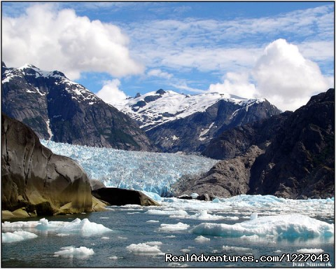 LeConte Bay and Glacier - Wilderness Adventure Tours in Wrangell, Alaska
