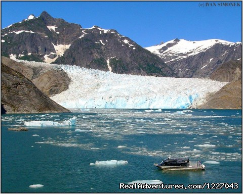 LeConte Glacier - Wilderness Adventure Tours in Wrangell, Alaska
