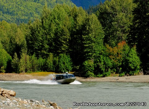 Stikine River Safari - Wilderness Adventure Tours in Wrangell, Alaska