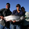 Fish Wrangell King salmon