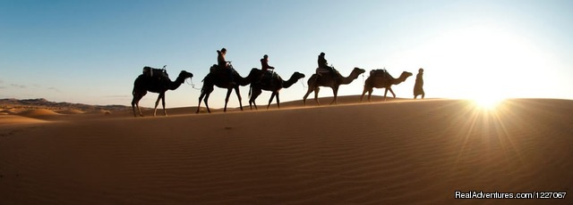Hol  Resterent - Morocco travel click