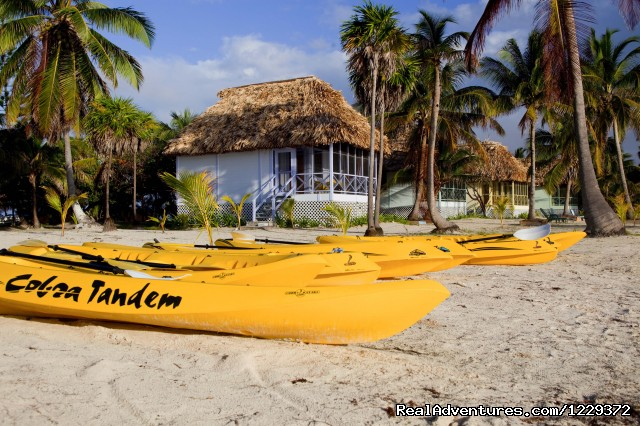 Standard Cabanas and Kayaks - Scuba Diving, Snorkeling, Romantic Getaway