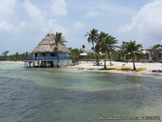 The High Tide Bar - Scuba Diving, Snorkeling, Romantic Getaway