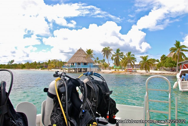 Guided Dive Trips - Scuba Diving, Snorkeling, Romantic Getaway
