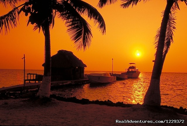 Dock at Sunrise - Scuba Diving, Snorkeling, Romantic Getaway