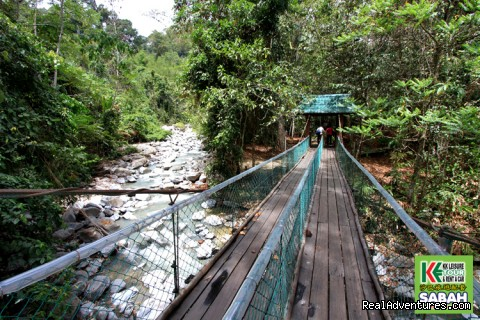 Poring Hot Spring, Ranau - 5d/4n Sabah Below The Wind Esplanade Packages