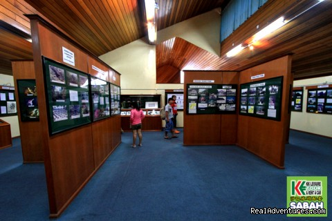 Kinabalu Park Gallery - 5d/4n Sabah Below The Wind Esplanade Packages