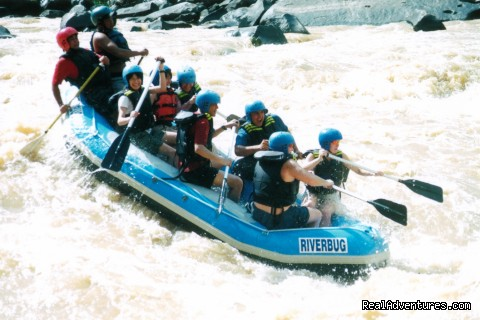 Padas Adventure Rafting - 5d/4n Sabah Below The Wind Esplanade Packages