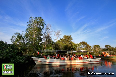 Proboscis Monkey River Cruise (#18 of 25) - 5d/4n Sabah Below The Wind Esplanade Packages
