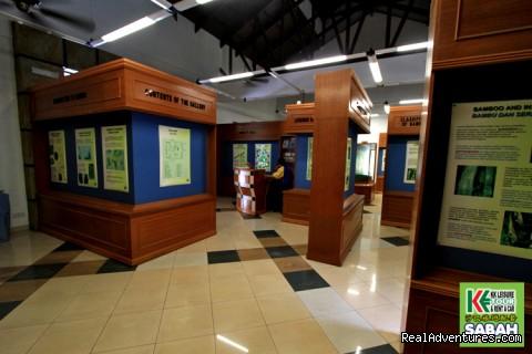Kinabalu Park Gallery - 4d/3n Kota Kinabalu Explorer Packages
