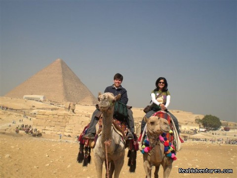 Champion Tours,Camel - Champion Tours Egypt