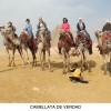 Champion Tours,Camel Ride