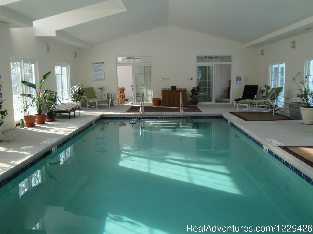 Indoor heated swimming pool | Image #2/16 | Relax, Renew, Rejuvenate at Ye Olde Manor House