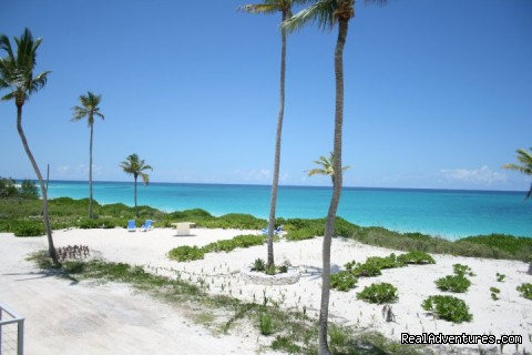 Another Photo of Beach - Hut Pointe Inn-Eco-Friendly Suites- Bahamas