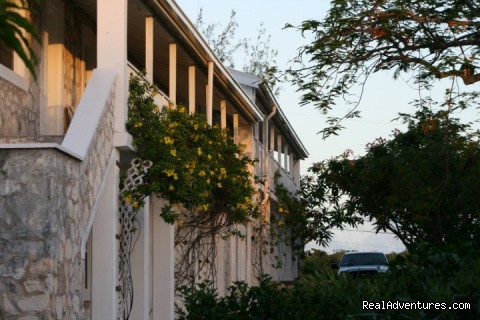Exterior - Hut Pointe Inn-Eco-Friendly Suites- Bahamas