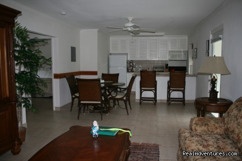 Living-Kitchen Area of Suites - Hut Pointe Inn-Eco-Friendly Suites- Bahamas