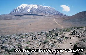 Kilimanjaro Rates: Kilimanjaro