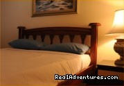 Twin Bed - Unpack and unwind at Masada Backpackers.