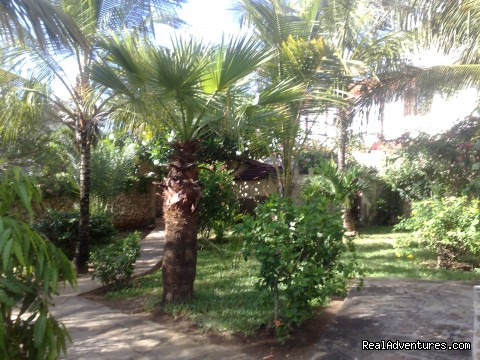 Garden View - Unforgetable Days at Watamu Tembo Village Resort