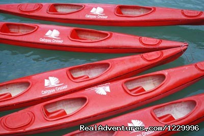 Kayaking - Luxury Calypso Cruiser of Halong bay 115usd person