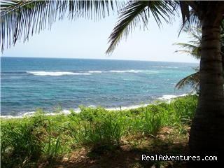 Beautiful Ocean Views - C9 Hatillo del Mar Guest House by the Sea