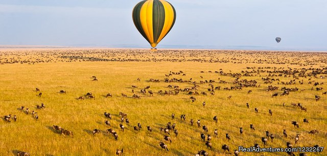 Kenya Association of Tour Operators Member (#6 of 19) - Budget Camping,Kenya Safari, Camping on RoofTent