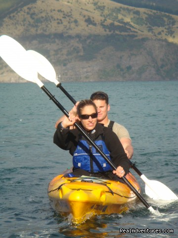 Exploring the harbour - Akaroa Guided Kayak Safari