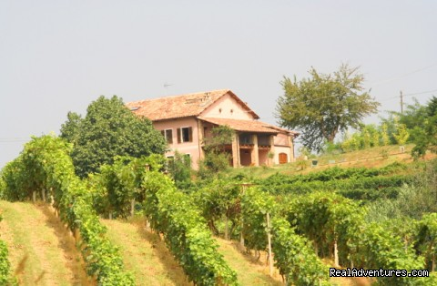 Romantic guesthouse among wine hills