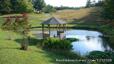 Image #3 of 6 - An Experience like no other at Beliveau Estate